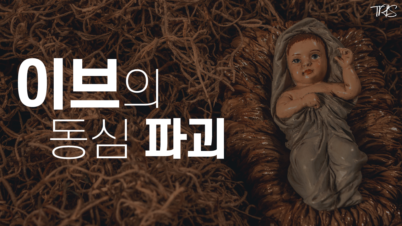 Read more about the article 크리스마스 기원의 비밀