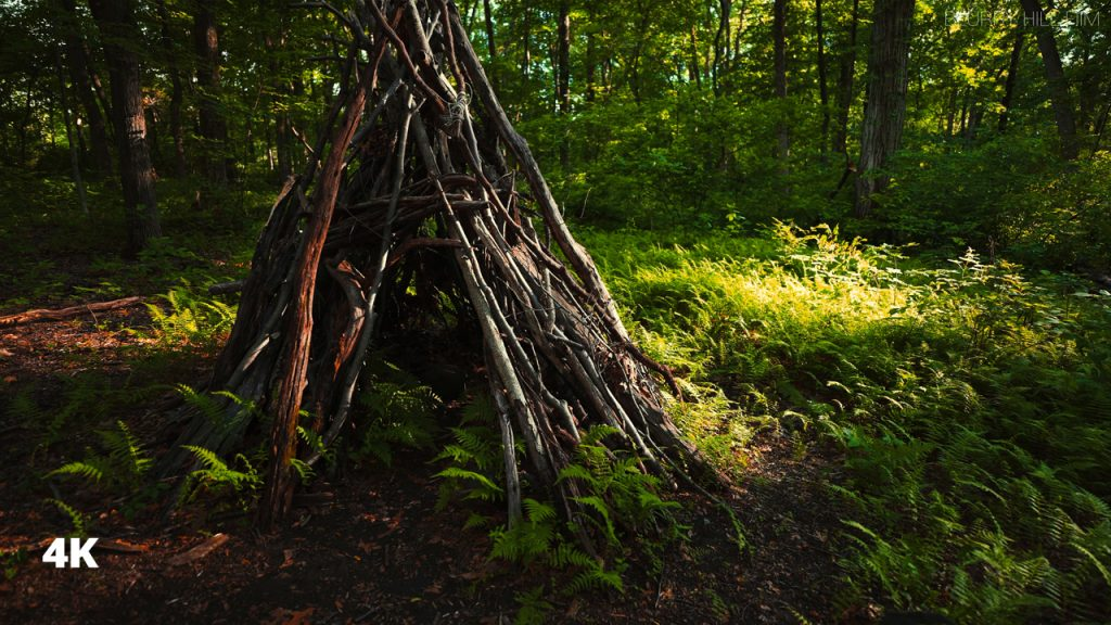 A Hut was Found While Relaxing Walking