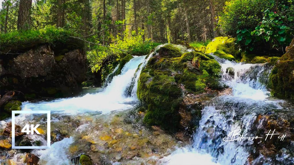 Relaxing Sounds of Waterfall and Birds' Singing