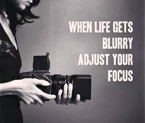 Read more about the article Re-Focus
