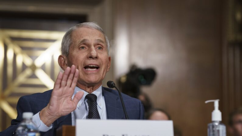 미 공화당 의원, 법무부에 파우치 박사 위증 혐의 수사 요청